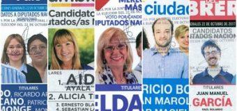 Ayala, Bolatti, Pertile, García, y Lezcano, la oferta electoral para los chaqueños