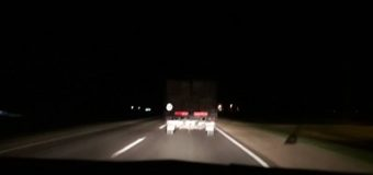 Es un auto? es un camión? Es una camioneta? No, es un asesino al volante