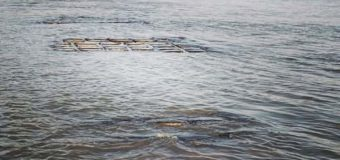 Se puede ver en algunas zonas de la orilla la manga que protege al túnel subfluvial