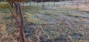 Miércoles con otra intensa helada en el Chaco